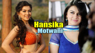 Hansika Motwani – From Child Artist to Leading Actress of Tollywood