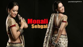 Monali Sehgal Hot Babe's Stunning Hot & Sexy Photoshoot Stills