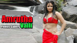 Amrutha Valli – South Indian Hot Actress Gallery