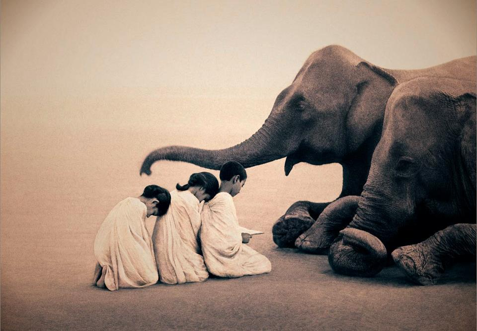 Ashes & Snow photos by Gregory Colbert, boy and leopard photos, elephant photos with kids