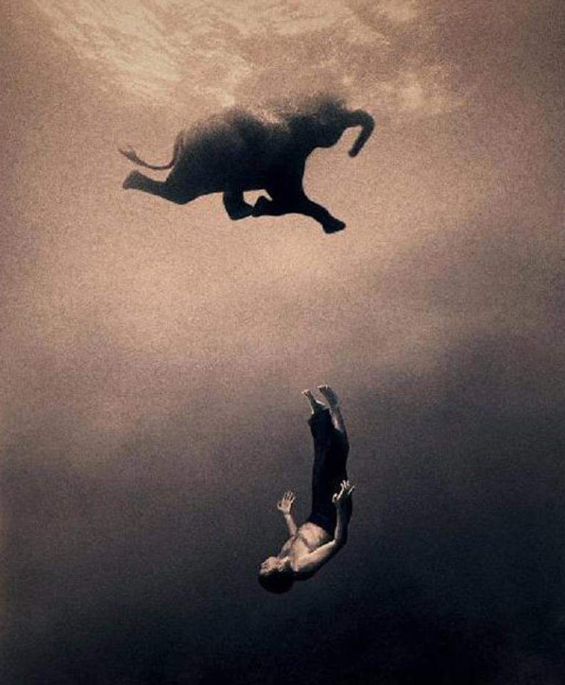 Ashes & Snow photos by Gregory Colbert, elephant in water with human, best underwater shots ever