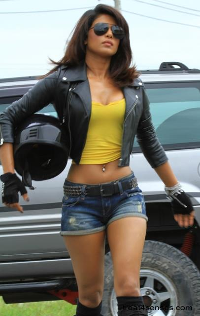Priyanka Chopra in hot pants, Priyanka Chopra sexy legs, Priyanka Chopra hot in khatron ke khiladi, Priyanka Chopra in hot pants, Priyanka Chopra in tight jeans, Priyanka Chopra sexy navel, Priyanka Chopra jeans pants and yellow top, Priyanka Chopra in hot avatar, Priyanka Chopra navel pics, Priyanka Chopra masala photos