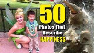 Best 50 Pictures That Showcase Happiness !!!