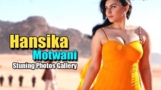 Hansika Motwani's Latest Creamie Photoshoot