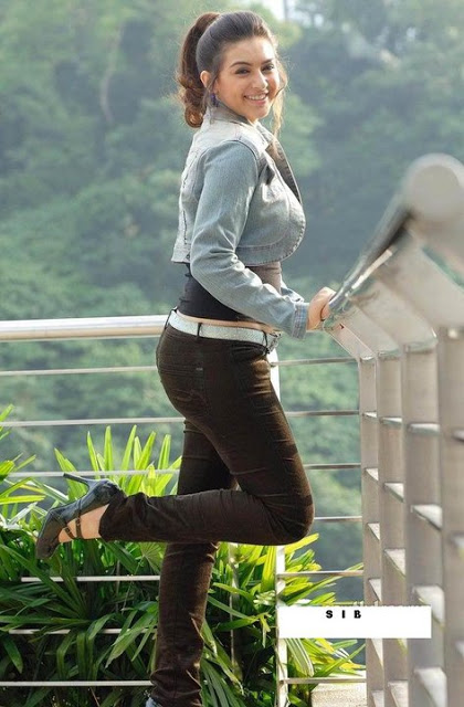 Hansika Motwani in denim jacket, Hansika Motwani in jeans, Hansika Motwani hot back, Hansika Motwani lovely pictures