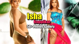 Isha Koppikar : 50+ Hot Photos Gallery of Bollywood Bad Girl