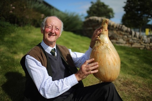 This Man. Look at how happy this man is with his Onion 1