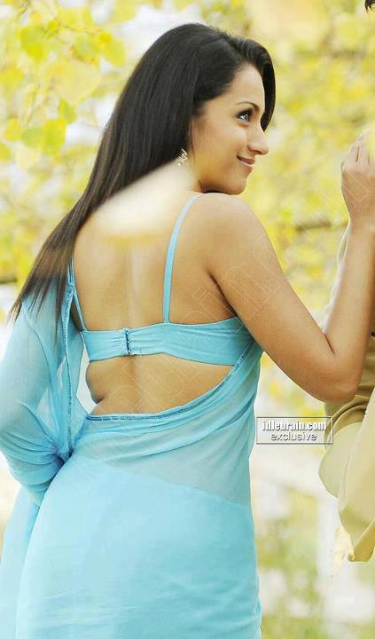 Trisha Backless in Saree in backless blouse, Trisha Krishnan in sexy saree, Trisha Krishnan hot photos in saree