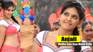 Anjali & Varalaxmi Sarathkumar Hot Stills from Movie Madha Gaja Raja