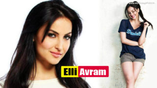 Elli Avram – 30 Photos Gallery of Bigg Boss 7 Most Beautiful Contestant