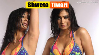 TV Actress Shweta Tiwari Hot & Seductive Photoshoot Stills – Very Very Steamy