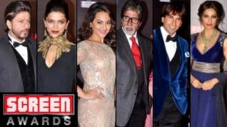 Life Ok Screen Awards 2013