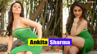 Ankita Sharma : South Hottie Seductive Latest Sexy Photoshoot Stills