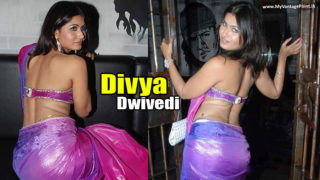 Divyaa Dwivedi : Sexy Savita Bhabhi of Internet in Saree