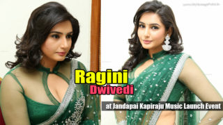 Ragini Dwivedi in Sexy Saree Showing Some Really HOT Stuff at Jandapai Kapiraju Music Launch Event