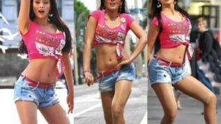 Shriya Saran Hot Leg Show & Navel Show in Sexy Pink Top and Short Pants…HOT AS HELL