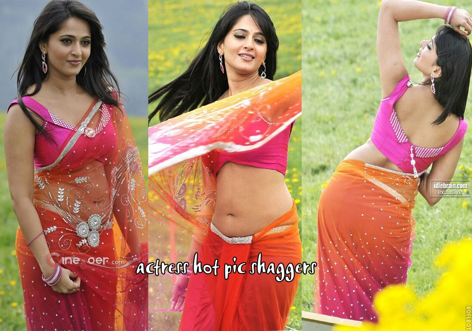Anushka Shetty Hot Spicy Sexy Backshow in Saree  & Mini Tight Dresses..DAMN HOT - VP (61)
