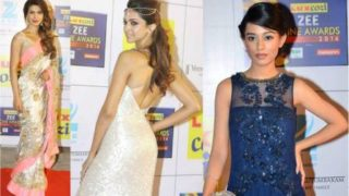Celebrities on Red Carpet in Zee Cine Awards 2014