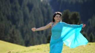 Hansika Motwani Cute & Sweet Stills in Blue Saree from Her South Indian Movie