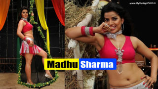 Madhu Sharma Hot Screenshots From Her Dance Number