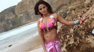 Neetu Chandra Hot Photos In Pink Sexy Dress at beach side from her Tamil Movie Theeradha Vilaiyattu Pillai (2010)
