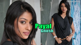 Payal Ghosh – Sexy South Indian Actress Hot Photoshoot in Black Dress Stills