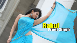 Rakul Preet Singh Hot Navel Photos in Saree