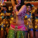 Anita Hassanandani Spicy Navel Pics from Item Song_VP (9)
