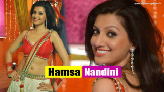Hamsa Nandini Superhot Item song in Telugu Movie Loukyam Stills