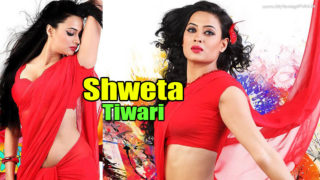 TV Actress Shweta Tiwari HOT Spicy Pics in Saree