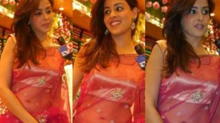 Genelia D'Souza's Best Pictures Collection in Sexy Sarees