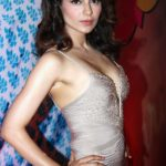 Kangana Ranaut Sexy Stills at Queen Movie Success Party in A Sexy Low Cut Silver Gown_VP ( (4)