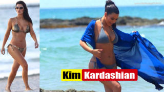 Kim Kardashian Shows off Her Fabulous Curves in Bikini