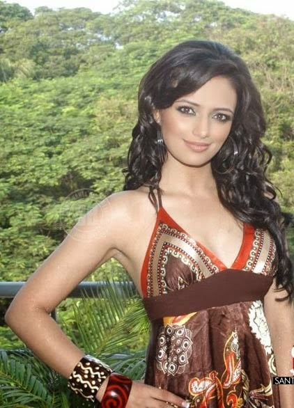 Roshni Chopra - Superhot TV Actress and Anchor of Comedy Circus in Sexy Dress_VP (2)