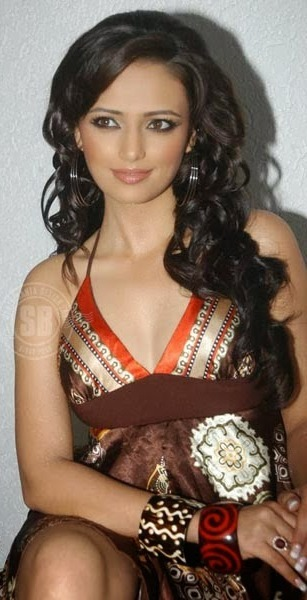 Roshni Chopra - Superhot TV Actress and Anchor of Comedy Circus in Sexy Dress_VP (3)