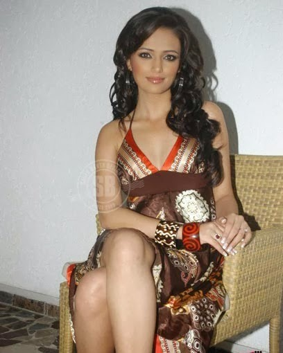 Roshni Chopra - Superhot TV Actress and Anchor of Comedy Circus in Sexy Dress_VP (4)