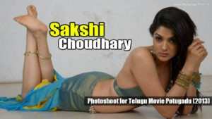 Read more about the article Sakshi Choudhary Super Hot Spicy Photos from Telugu Movie Potugadu (2013)