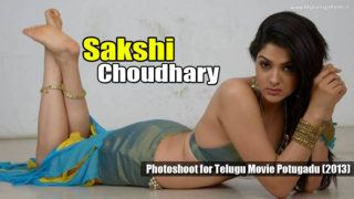 Sakshi Choudhary Super Hot Spicy Photos from Telugu Movie Potugadu (2013)
