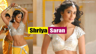 Shriya Saran Hot & Spicy Navel Show in Yellow Half Saree & Silver Blouse