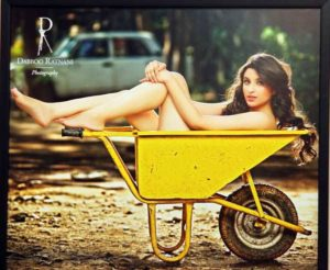 Read more about the article Dabboo Ratnani Calendar with Bollywood Celebrities 2014