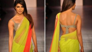 Top 20 Pictures of Desi Girl Priyanka Chopra in Sexy Sarees
