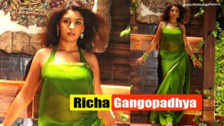Richa Gangopadhya's Top 10 Pictures in Saree