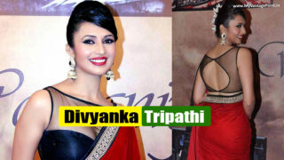 Divyanka Tripathi – Top 10 Pictures of Television Actress in Saree