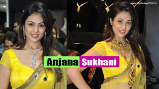 Anjana Sukhani in Yellow Saree at Inauguration of Jewellery Shop