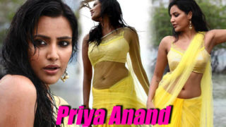 Top 10 Hot Photos of Priya Anand in Saree