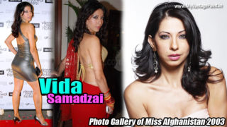 Vida Samadzai – Hot House-mate of Bigg Boss Season 5 & Miss Afghanistan 2003