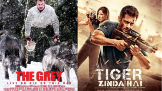 Is Salman Khan's Tiger Zinda Hai COPIES Liam Neeson's The Grey?