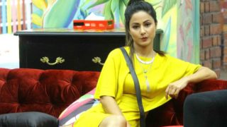 What went wrong with Hina Khan in Bigg Boss Season 11!