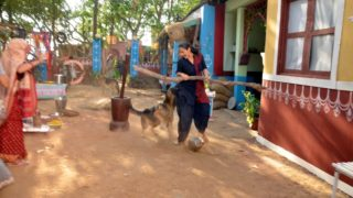 Ikyawann' Actress Prachi Tehlan badly attacked by a dog during the shoot