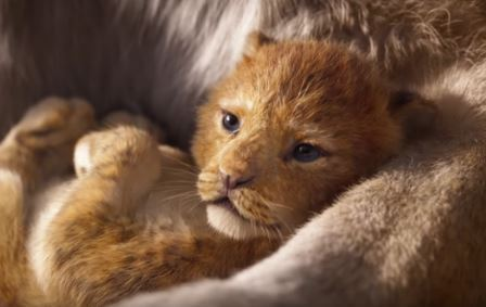 Hindi Version of Disney's THE LION KING with the voice of Shah Rukh Khan as Mufasa to Release in UAE